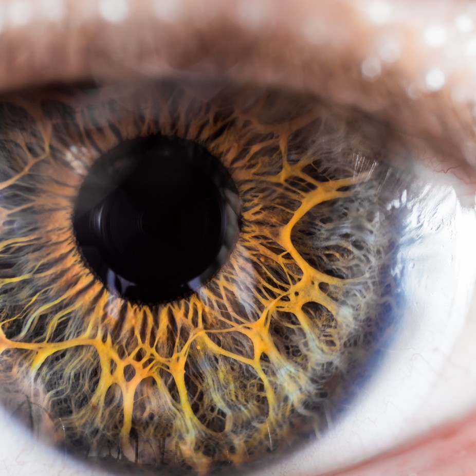 Eye See You by joewalshphoto - Experimental Photography Project