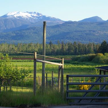 Part of Mount Arrowsmith - Qualicum Beach - 2 June 2007