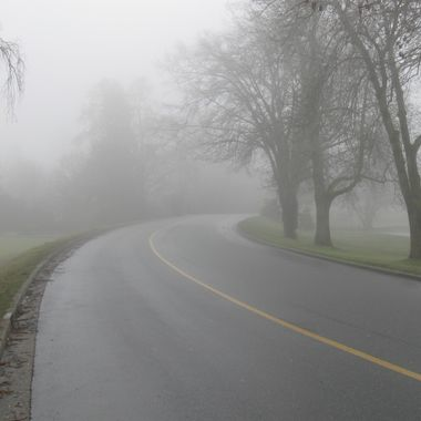 Foggy end of Stanley Park into the West End of Vancouver, BC - 21January 2009