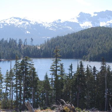 Robotham Lake, Vancouver Island, near Englishman River - 12 June 2010 159