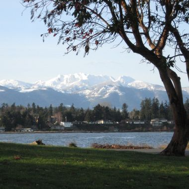 ARROWSWMITH MOUNTAIN FROM PARKSVILLE PARK 12 JAN 2008