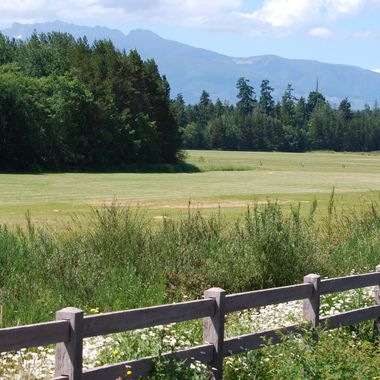 Fields, Forests & Mountains from Renz Road in Parksville, British Columbia, CANADA - June 2015