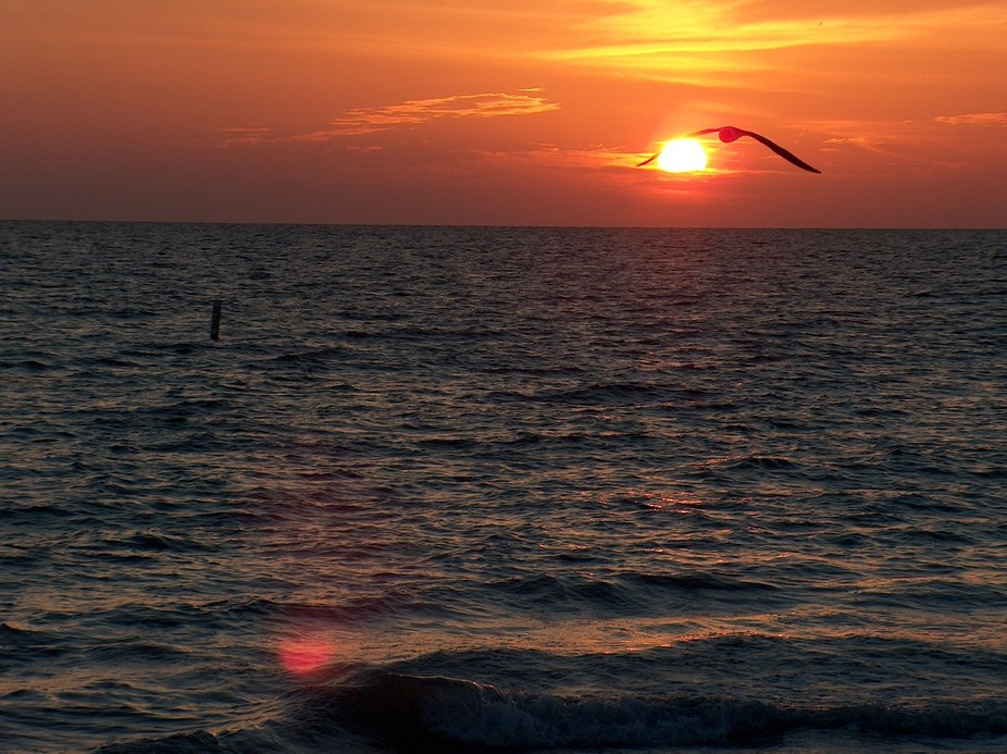 Scenic, Sunset