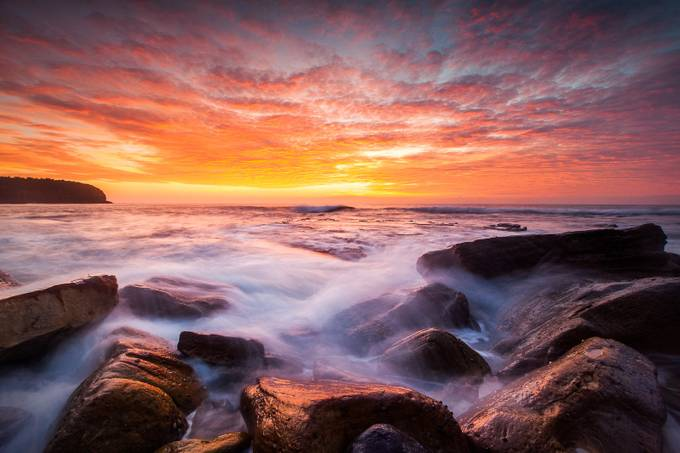 Red Symphony by TonyLaw - Discover Oceania Photo Contest