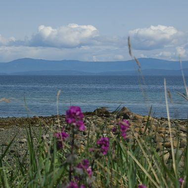 Qualicum Beach in the Spring, looking towards teh mainland of British Columbia - Friday, 25 APRIL 2008