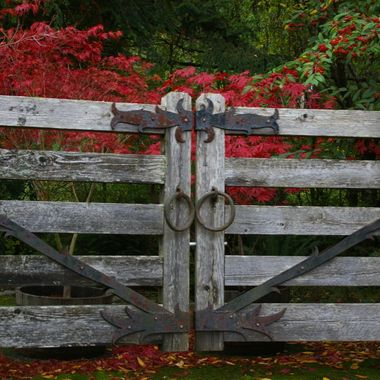 Red & Wrought Iron & old wood fence in Qualicum Beach - 22 Oct 2007
