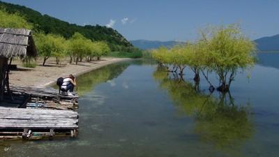 Lake Prespa II