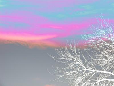 IMG_3772_Parfait Sky