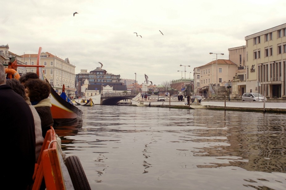 Water canals in Aveiro, Portugal. It's Called The Portuguese Venice.