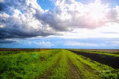 Road of Dreams....