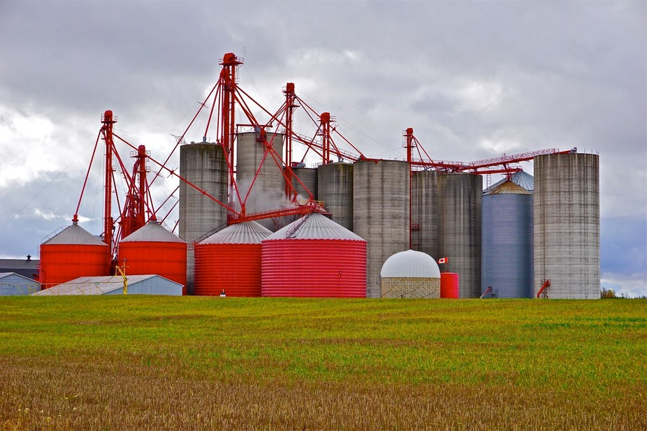 Colourful silos on a mixed crop farm, near Exeter, Ontario, Canada. Soybean field in the foreground.