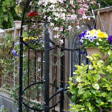 Black wrought iron trelis with lacy Clamatis with tiny flowers and vine leaves, pansies, etc ... charming, during Oceanside Mother's Day Garden Show on Vancouver Island - May 2015