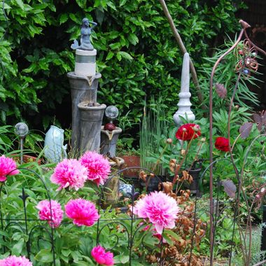 ZEN GARDEN with Peonie in red & pink - Parksville on Banks May 2015
