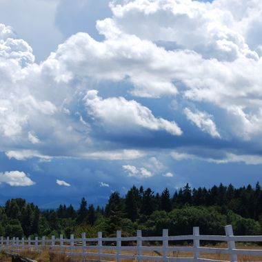 FENCE RUN - Summer 2015 in Parksville, B.C. on Vancouver Island, CANADA