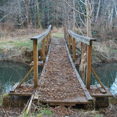 DSC_0057 Park of Kaye Road in Parksville, BC on Englishman River Feb 23, 2015