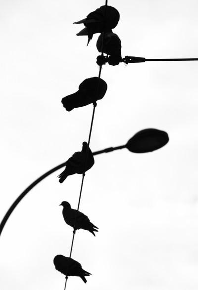 alignment in air