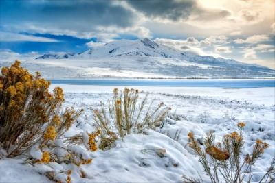Dead Sea Winter