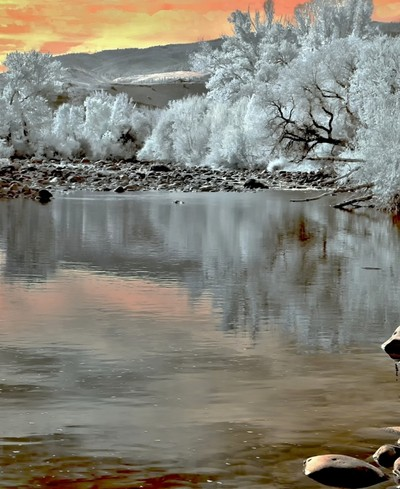 Late Afternoon On The Truckee River in Infrared.