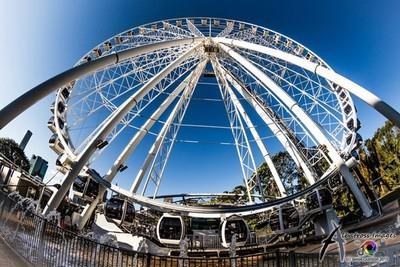 The Brisbane Eye (o)