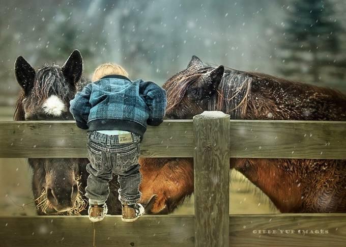 Little Wrangler by Giddeyupimages - Farms And Barns Photo Contest