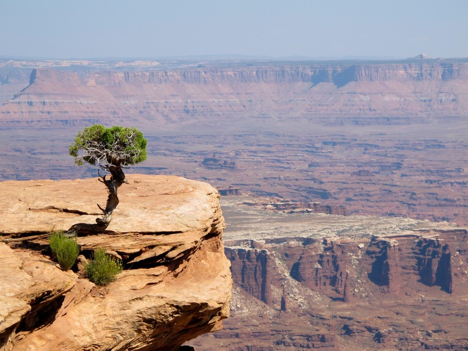 exploring canyon lands  national park in utah