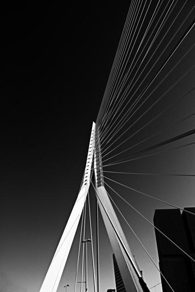 Bridge of Roterdam