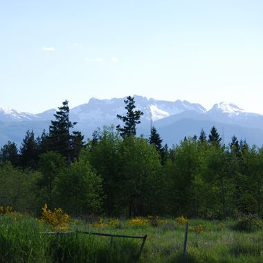 Arrowsmith from Hirst Ave - Parksville, BC End of May 2013