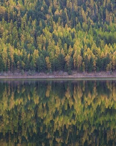 Montana Fall
