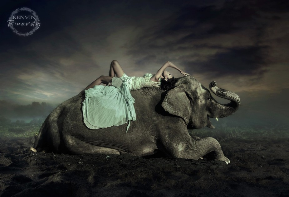 The girl and Elephant