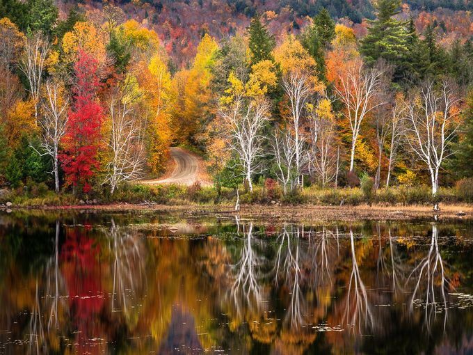 Autumn Splendor by Bob_Ellis - Fall 2017 Photo Contest