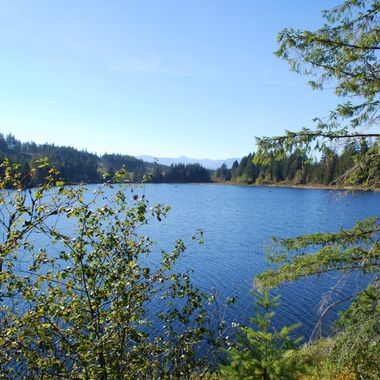 Courtenay Lake on way back from Campbell River on Vancouver Island Oct 7, 2012