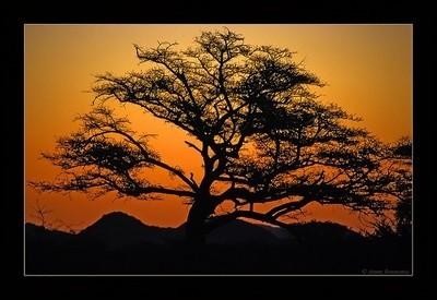 Namibia'n Sundowner