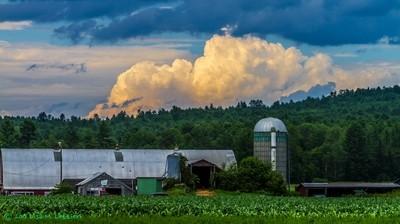 Rural new Hampshire