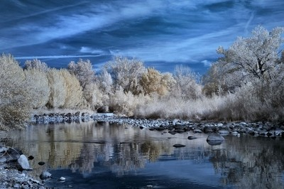Truckee River At It's  Summer Low, In Infrared.