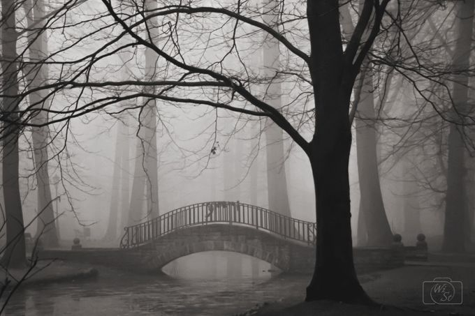 Bridge in fog by WiSt - Silhouettes Of Trees Photo Contest
