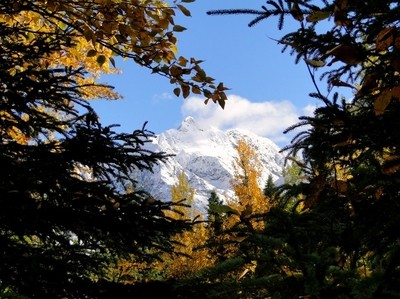 Denali Range Alaska