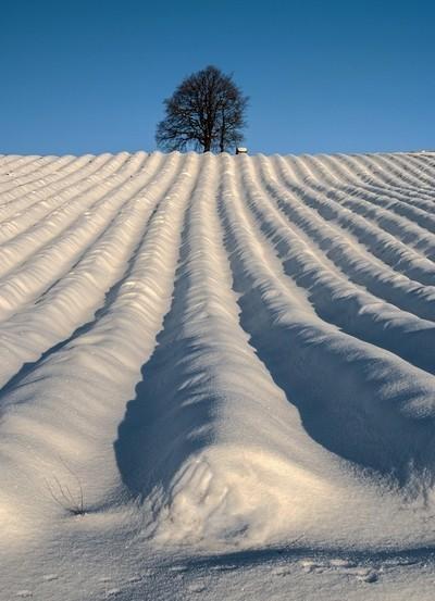 Winter perspective