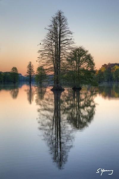 Reflections on Stumpy Lake