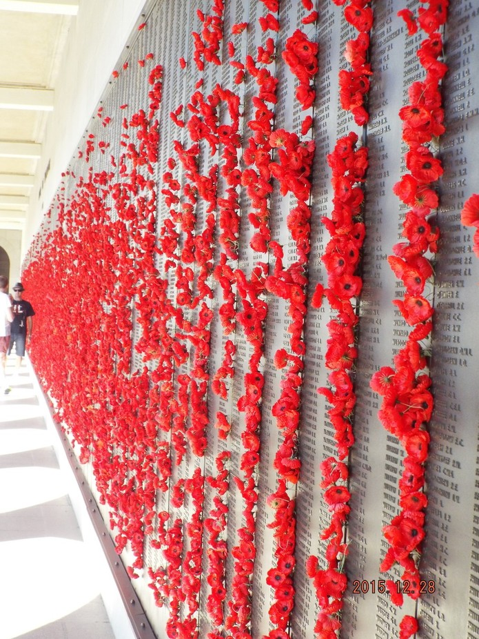 Wall of military men and women who gave their lives for their country. War memorial In Canberra, ...