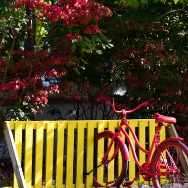 red bike yellow fence