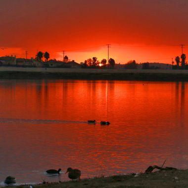 Sunset IMG_5284