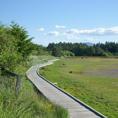 BOARDWALK OF SAN PARIEL - PARKSVILLE, BC - 24 May 2008