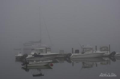 Gray Ships