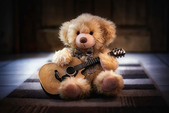 Lonely Bear - Jamming by samanthawellsphotography - Soft Photo Contest