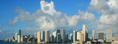 Miami City Scape