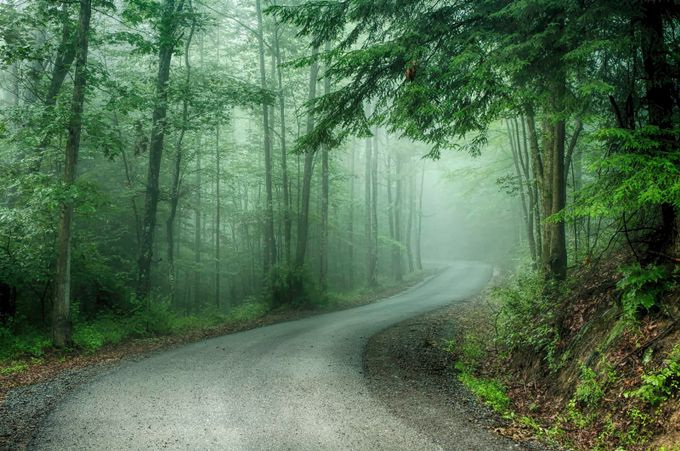 West Virginia Road by R_Tom_Sizemore_III - Creative Travels Photo Contest