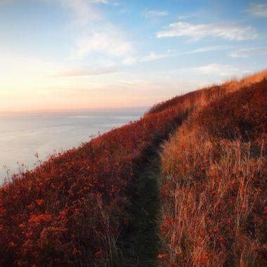 Cape Split Trail