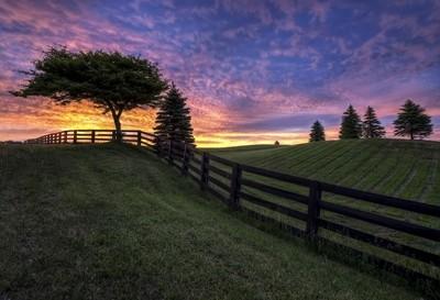 Singular Sunrise