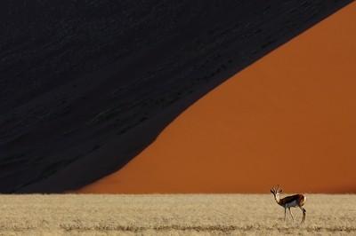 Namibian geometry