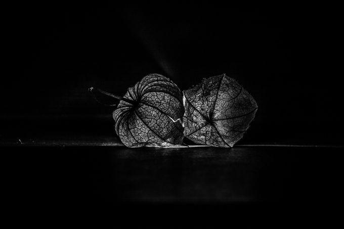 Broken heart´s by AntonioBernardino - Semitransparent Photo Contest